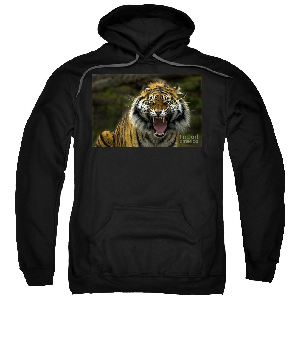 Tiger Sweatshirt featuring the photograph Eyes Of The Tiger by Mike Dawson