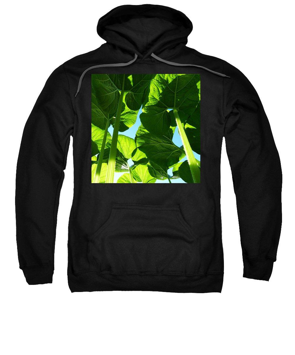 Faerie Sweatshirt featuring the photograph Faerie World by Monique Morin Matson