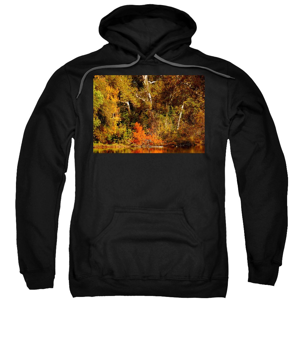 Creekside Fall Color Colors Leaves Trees One Mile Bidwell Park Chico Ca Sweatshirt featuring the photograph Fall Color Creekside by Holly Blunkall