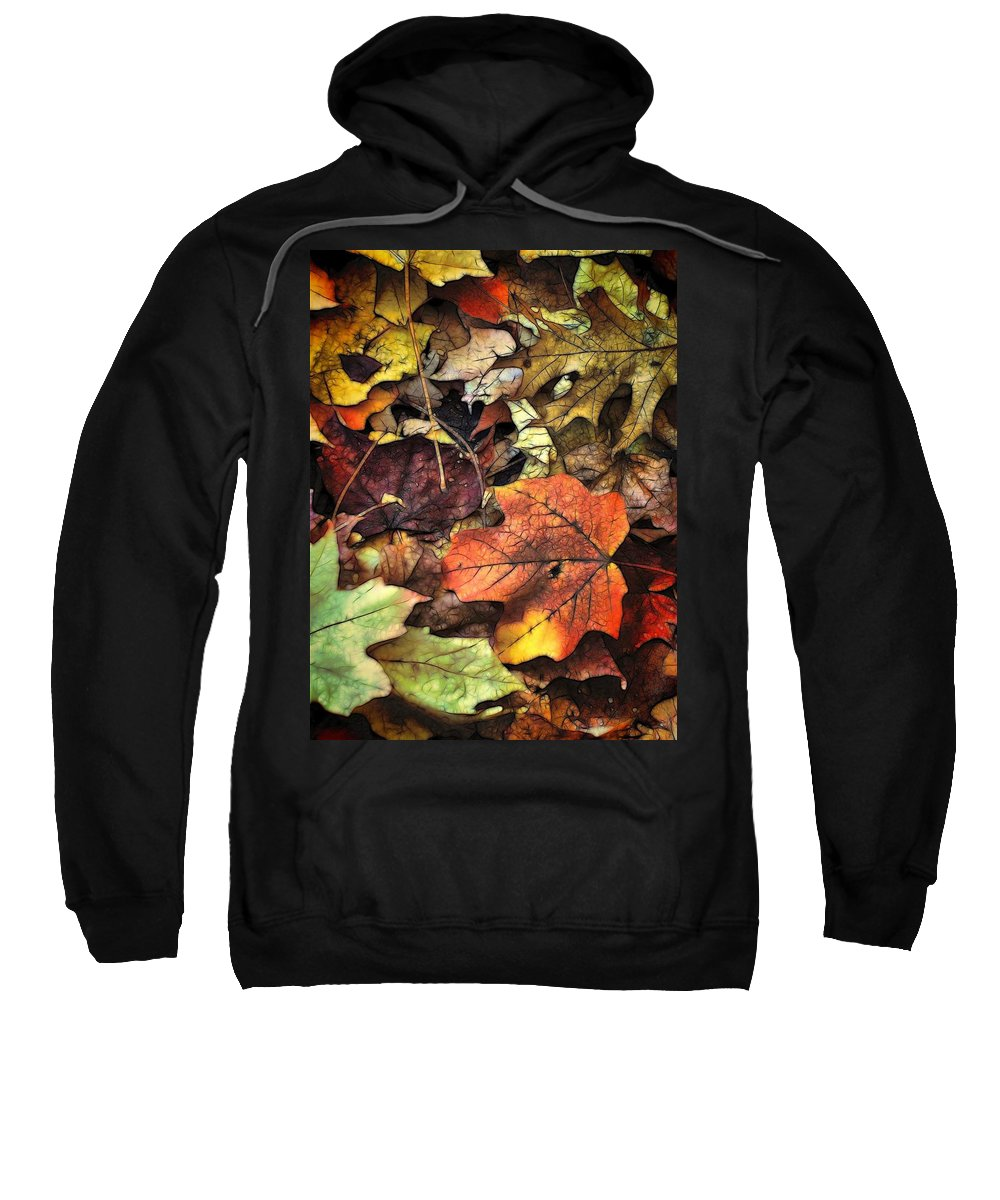 Leaf Sweatshirt featuring the photograph Fall Colors by Lyle Hatch