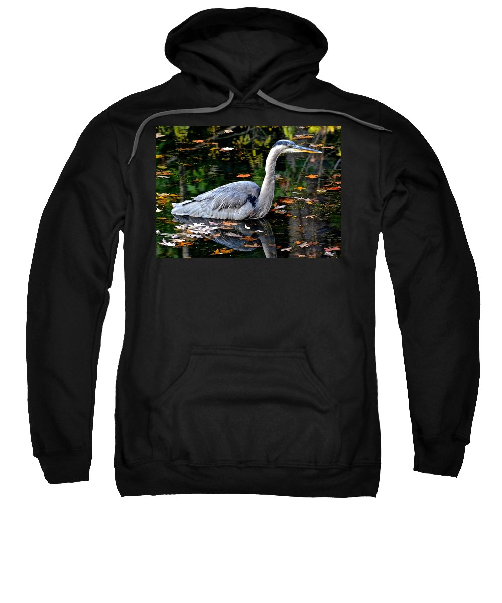 Fowl Sweatshirt featuring the photograph Fall Foliage And Fowl by Frozen in Time Fine Art Photography
