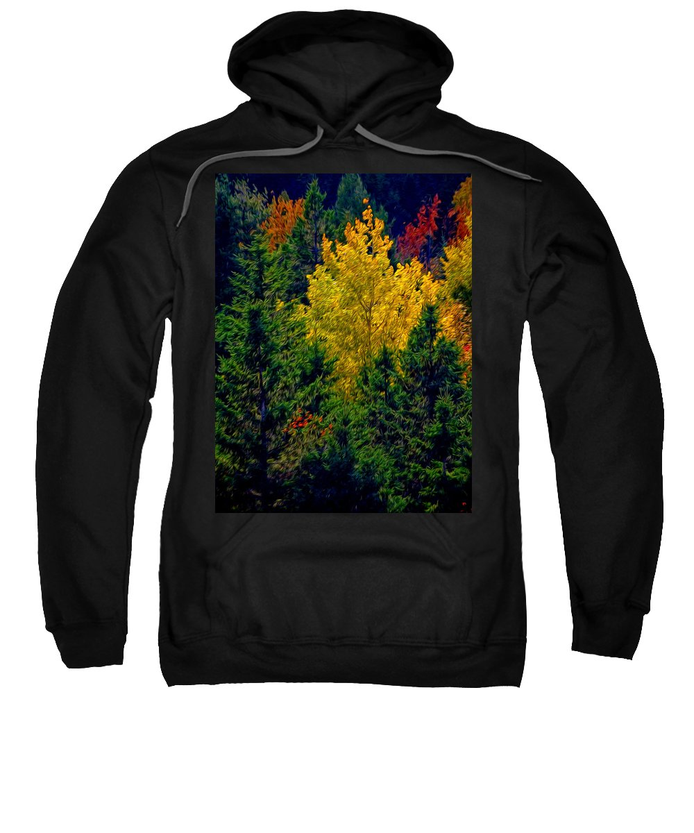 New England Sweatshirt featuring the photograph Fall Leaves by Bill Howard