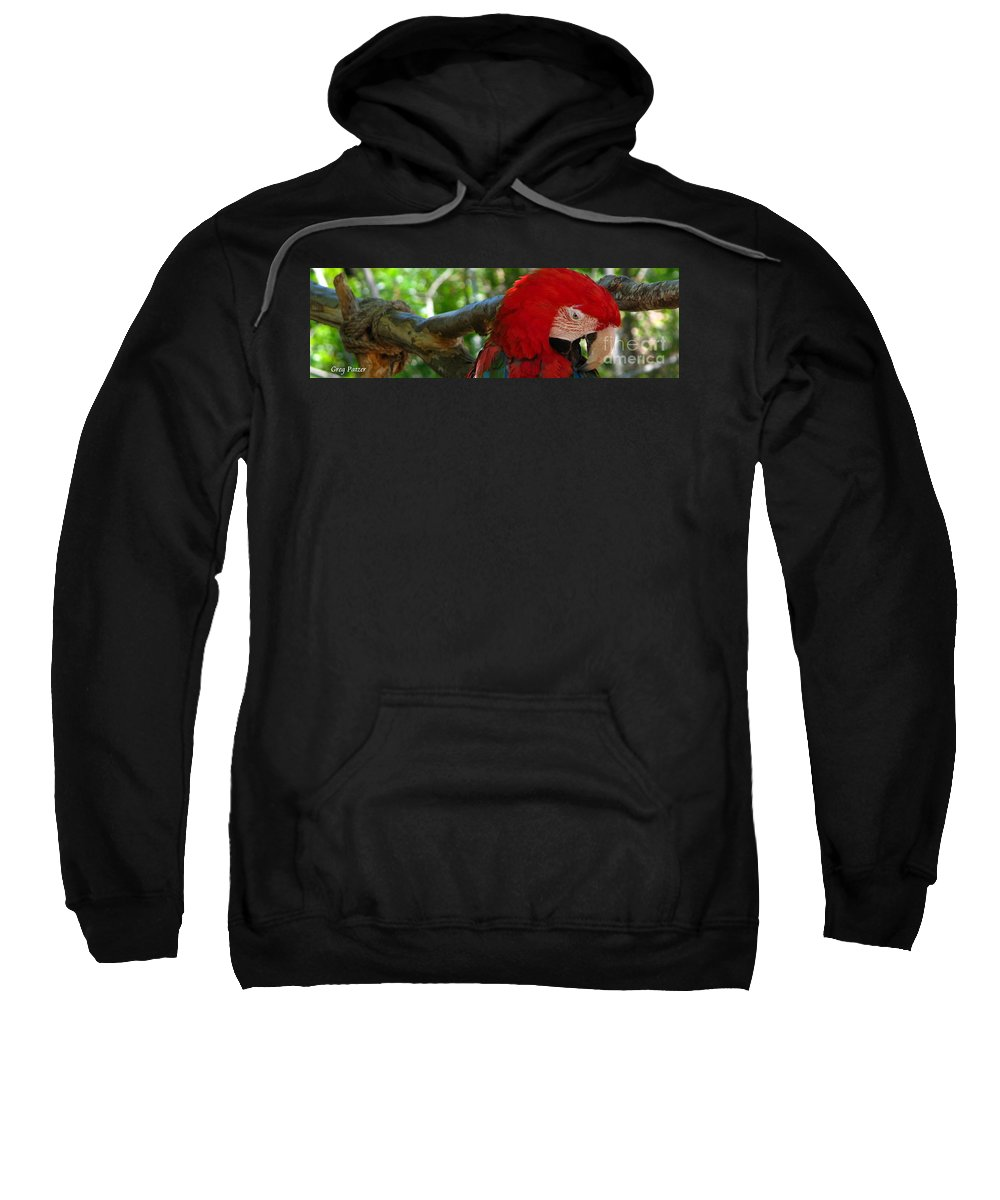 Patzer Sweatshirt featuring the photograph Feeling A Little Red by Greg Patzer