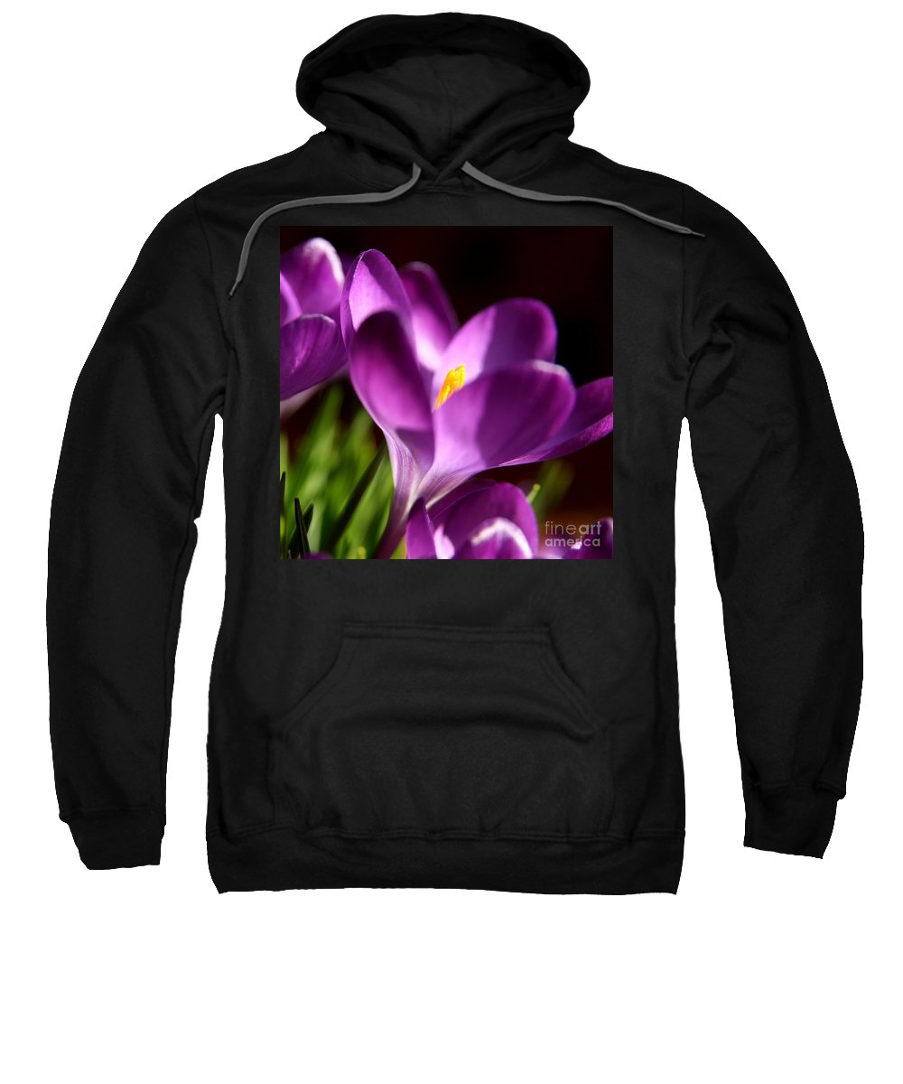 Flower Photography Sweatshirt featuring the photograph Floral Shadows by Neal Eslinger