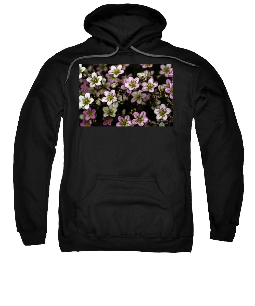 Flower Sweatshirt featuring the photograph Floral Wallpaper by TouTouke A Y