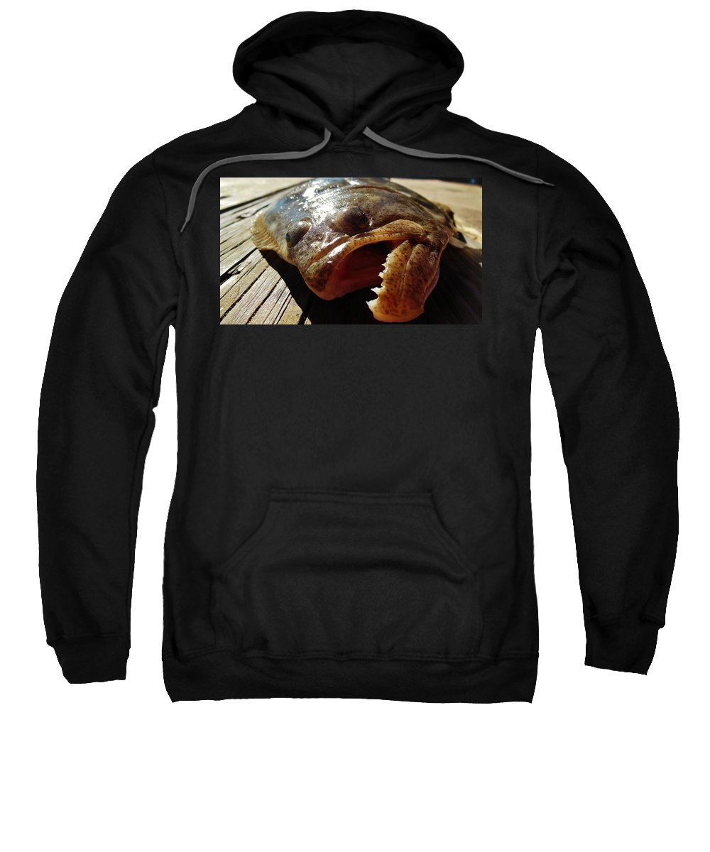 Mark Lemmon Cape Hatteras Nc The Outer Banks Photographer Subjects From Sunrise Sweatshirt featuring the photograph Flounder Face 2 10/26 by Mark Lemmon