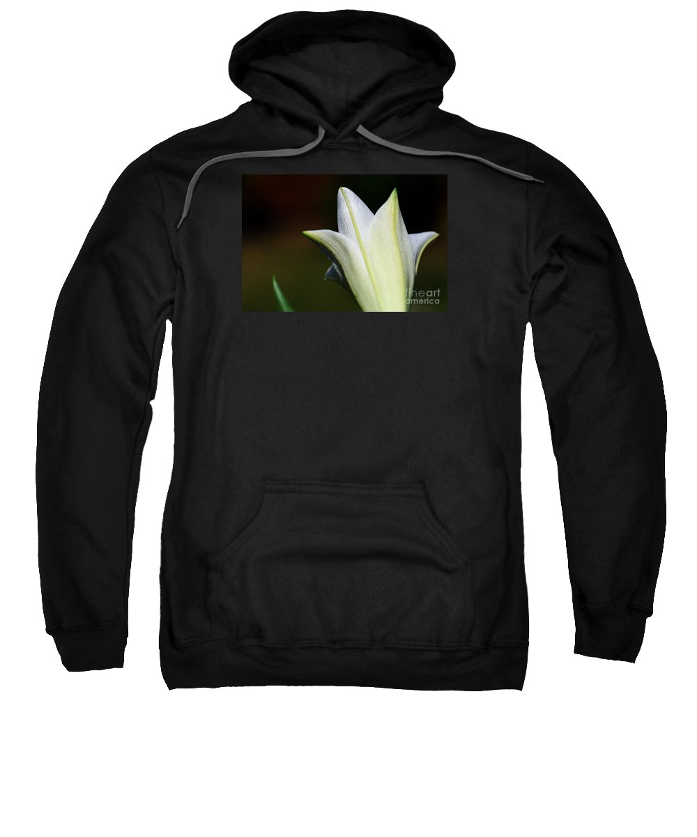 For The Love Of Lilies 9 Sweatshirt featuring the digital art For The Love Of Lilies 9 by Wendy Wilton