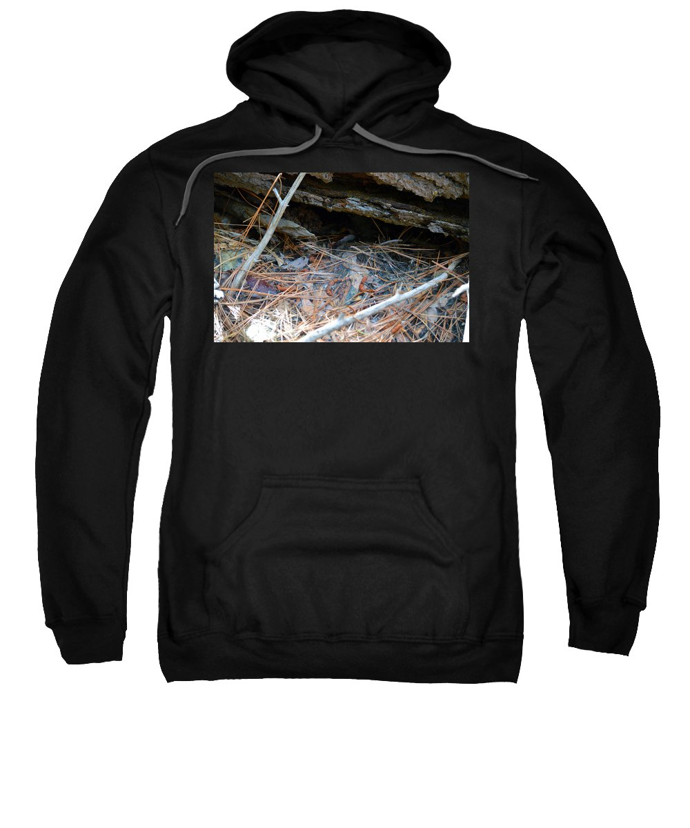 Nevada Sweatshirt featuring the photograph Forest Floor 2 by Brent Dolliver