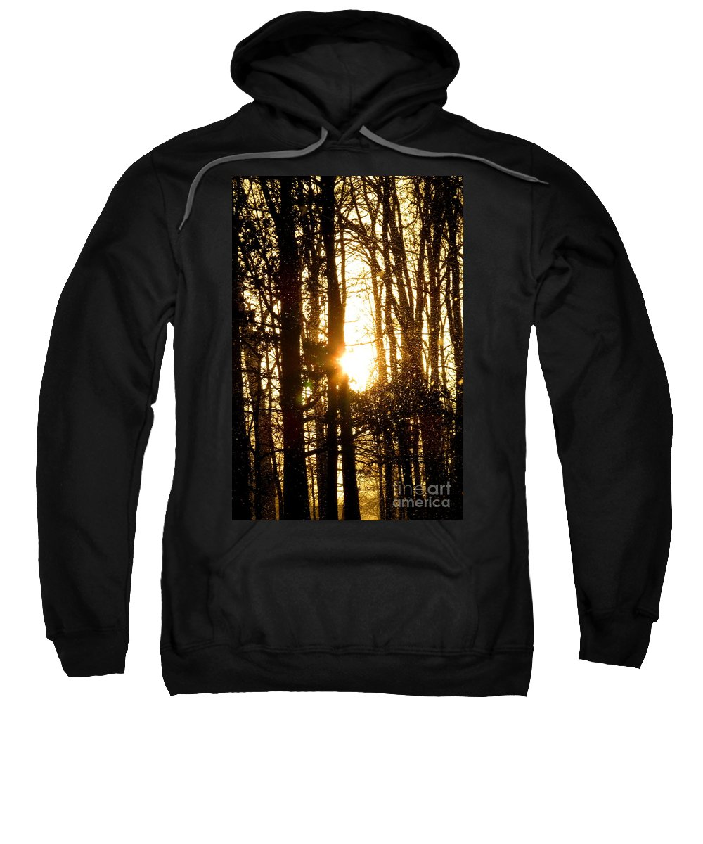 Winter Forest Flurry Lightscape Winterscapes Snowscapes Forestscapes Sunlight Snowfall Sunshine Flurries Winter Woodland Silhouettes Natural Landscapes Winter Weatherscapes Naturescapes Forest Silhouette Sweatshirt featuring the photograph Forest Flurry Lightscape by Joshua Bales