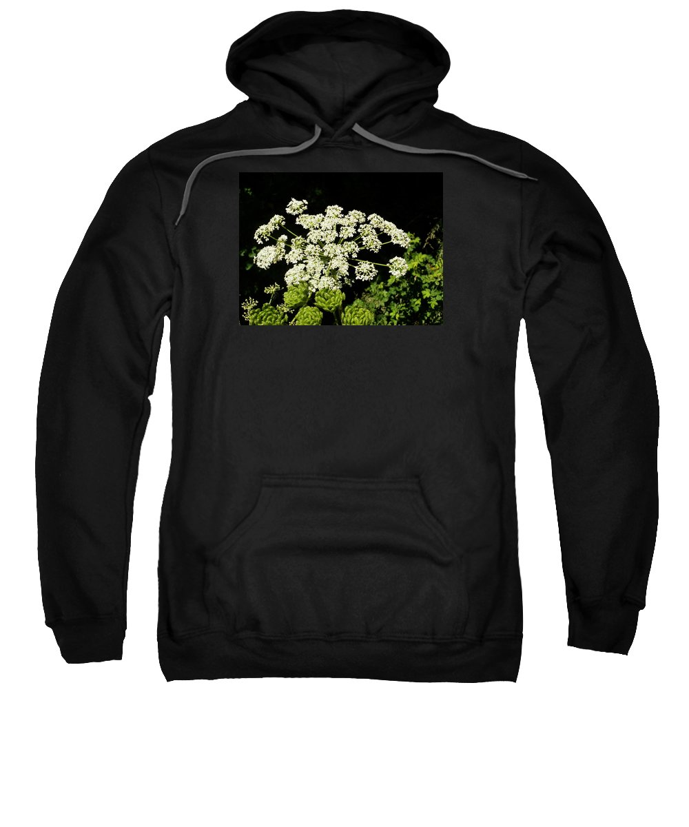 Flower Sweatshirt featuring the photograph Forest Lace by VLee Watson