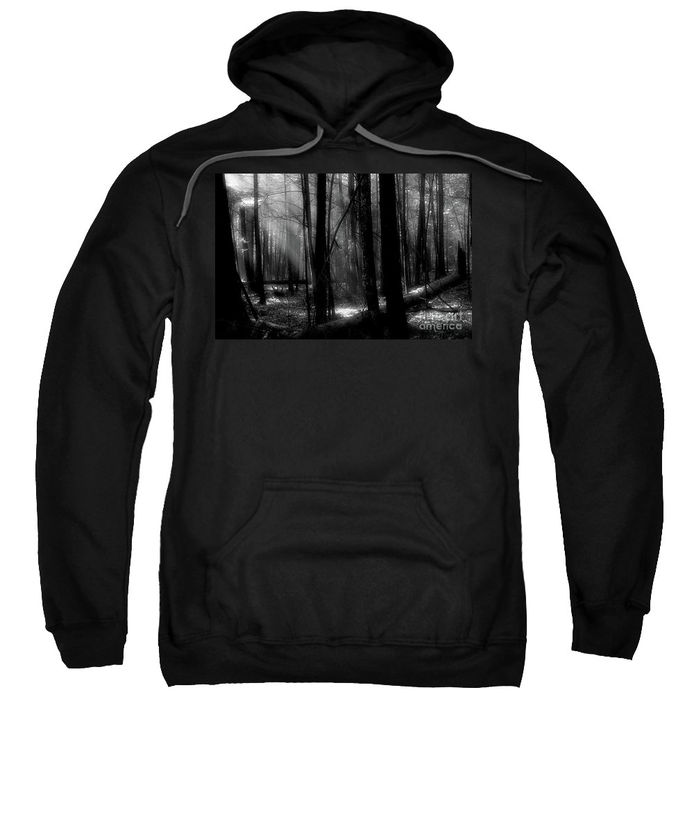 Tress Sweatshirt featuring the photograph Forest Light In Black And White by Douglas Stucky