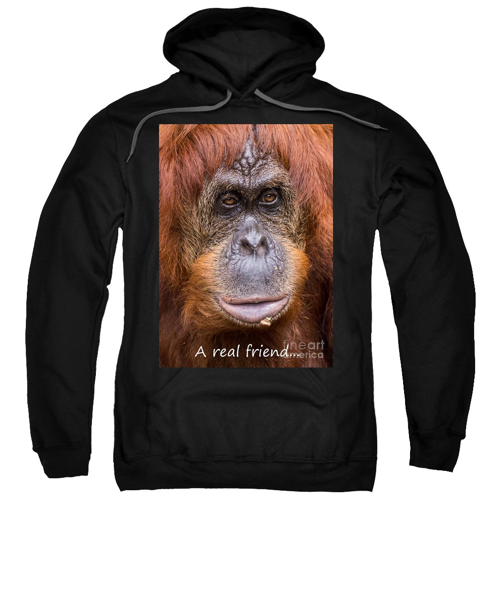 Monkey Sweatshirt featuring the photograph Friendship Card by Edward Fielding
