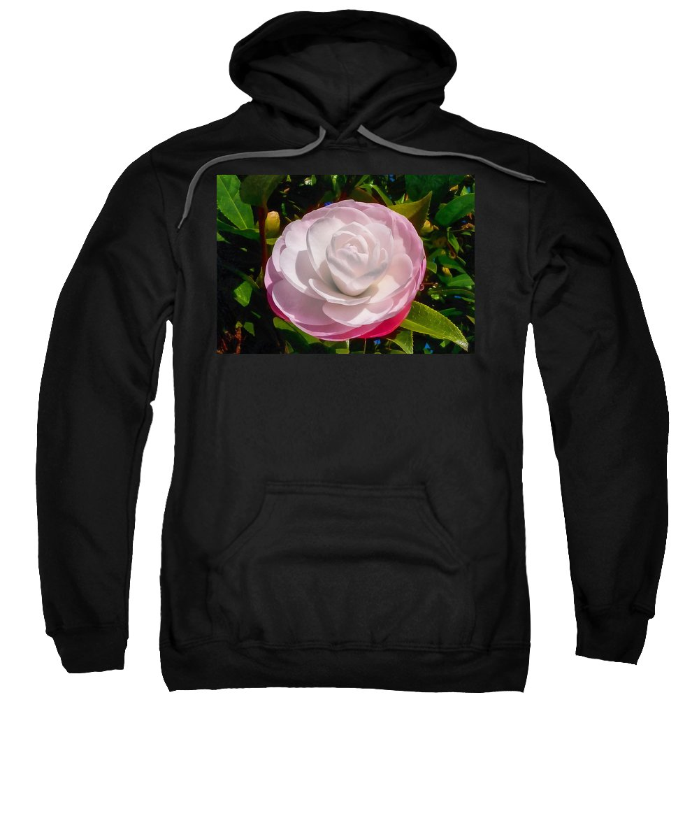 Flower Sweatshirt featuring the photograph From Red To White by Steve Taylor
