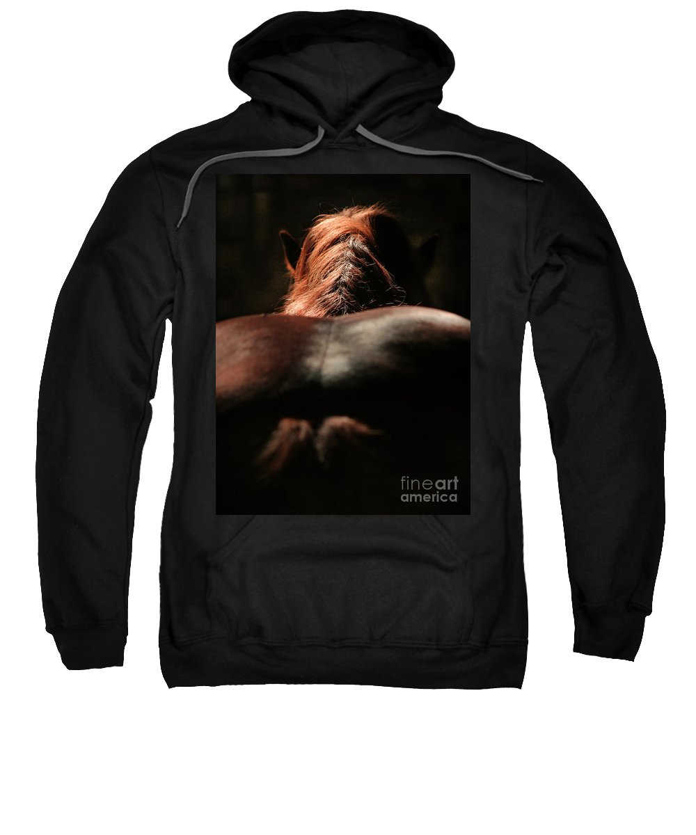 Horse Sweatshirt featuring the photograph From The Back by Angel Ciesniarska