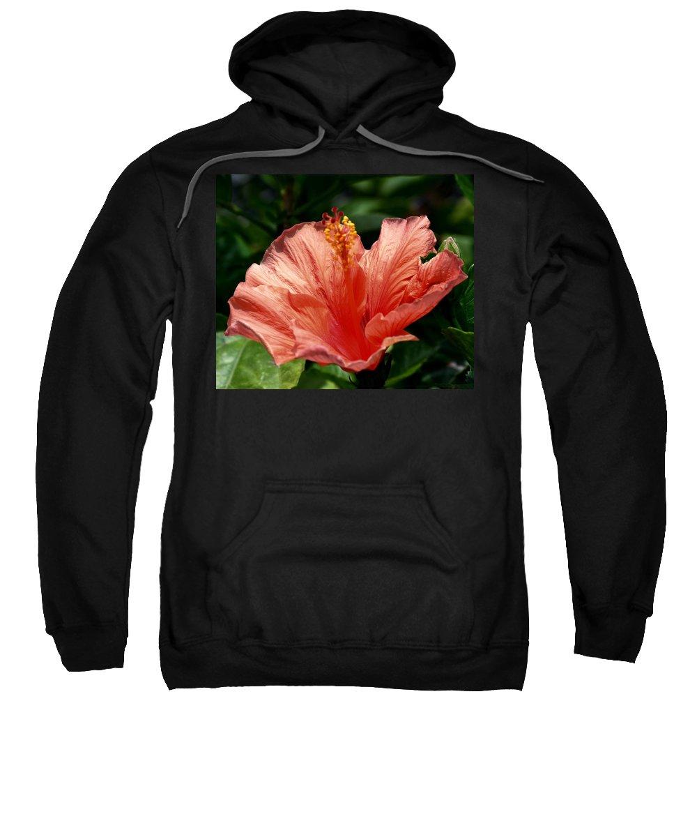 Fuego Sweatshirt featuring the photograph Fuego by Maria Urso