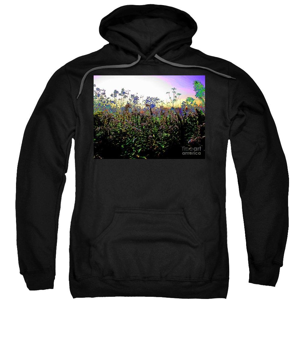 Garden Sweatshirt featuring the photograph Garden by Ron Tackett