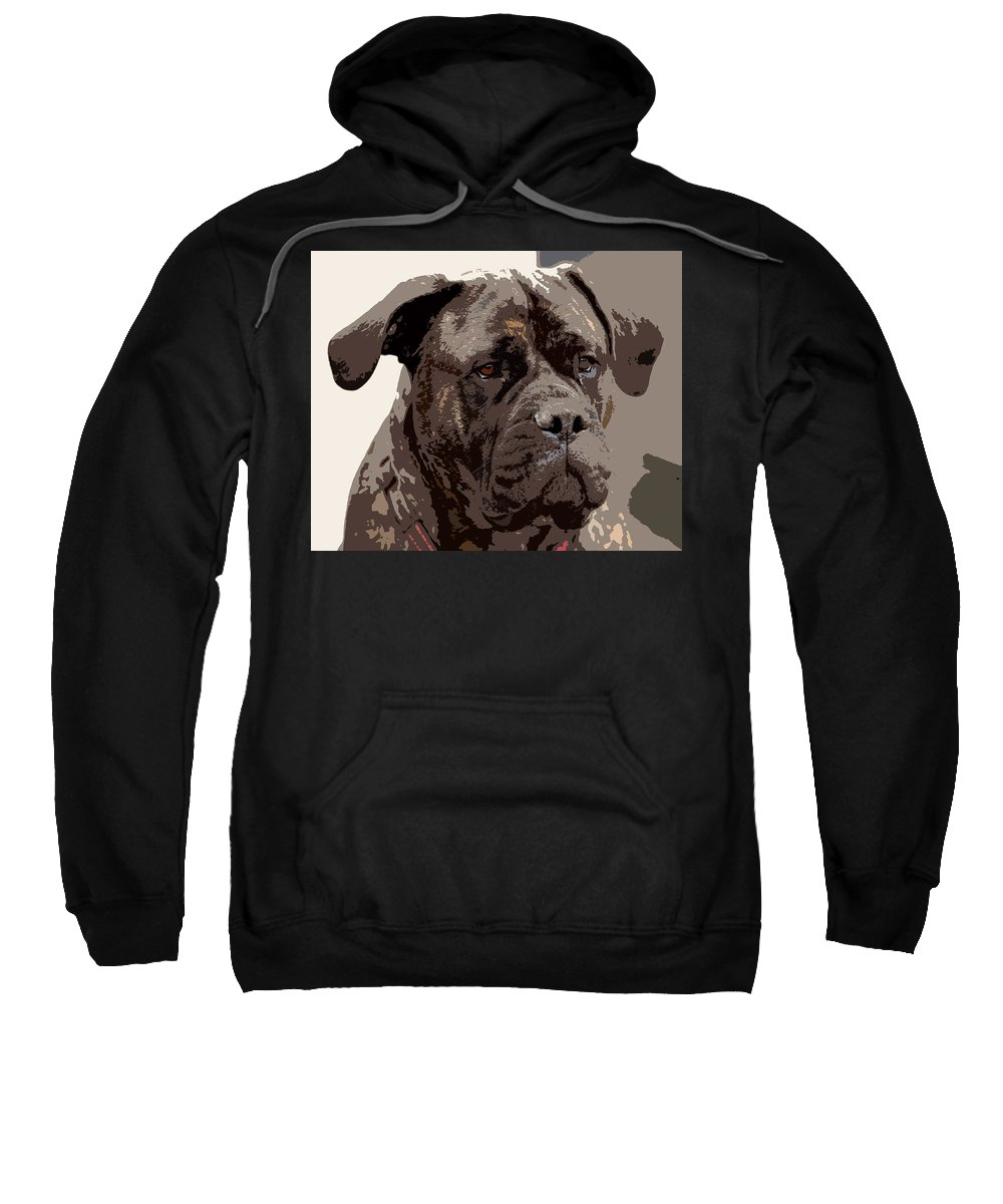 Animals Sweatshirt featuring the photograph Gentle Gina by Debbie Oppermann