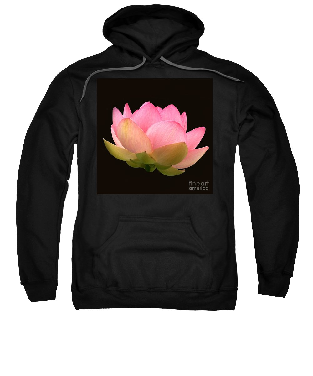 Glowing Pink Lotus Flower Sweatshirt featuring the photograph Glowing Lotus Square Frame by Byron Varvarigos
