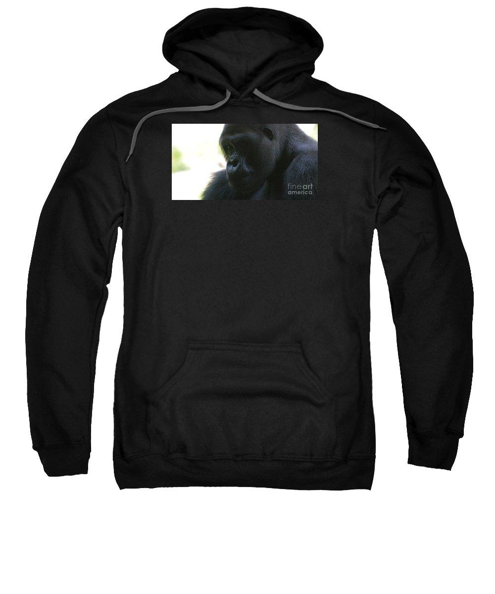 Gorilla Sweatshirt featuring the photograph Gorilla-10 by Gary Gingrich Galleries