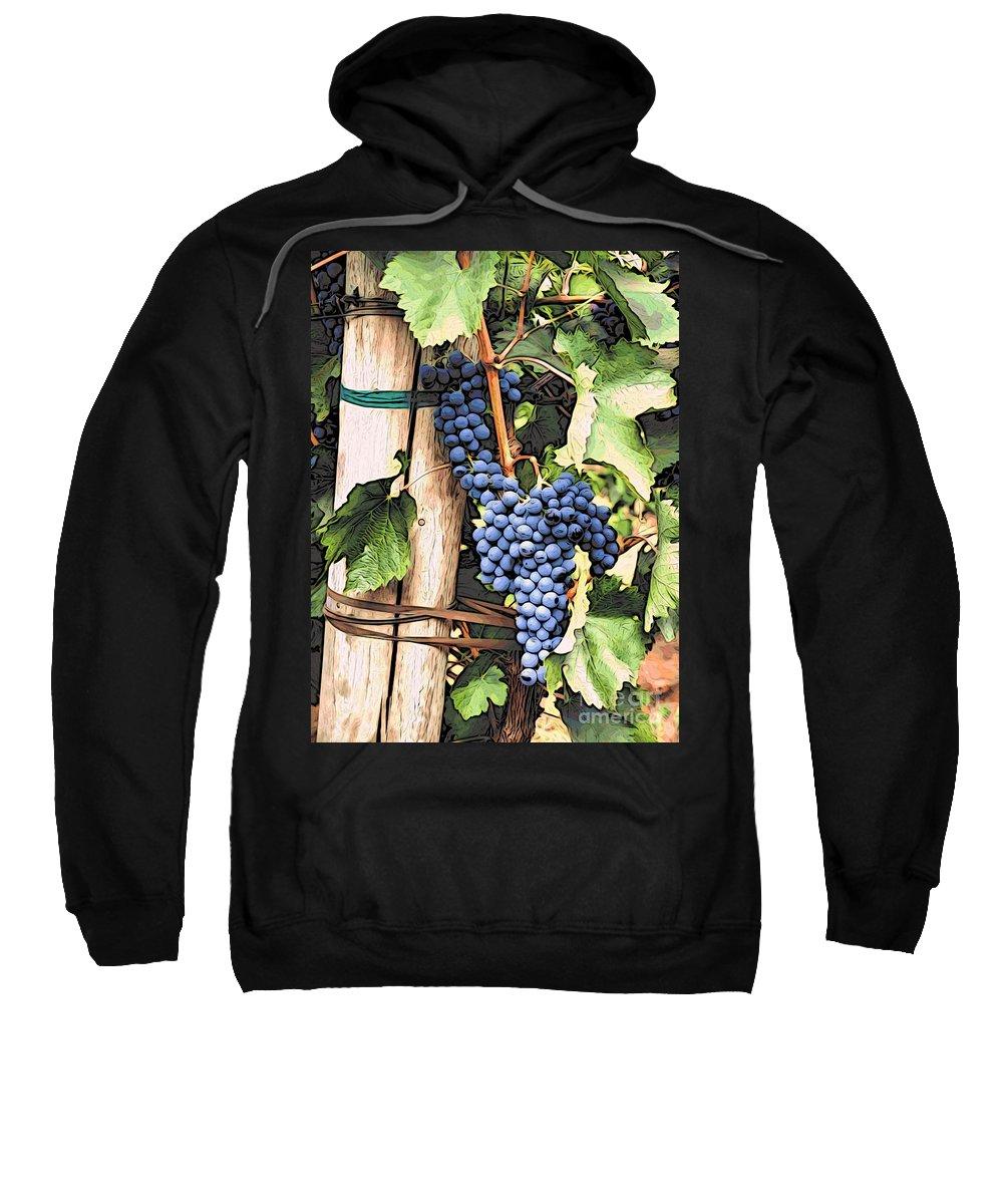 Kitchen Art Sweatshirt featuring the photograph Grapes 1 by Jacklyn Duryea Fraizer