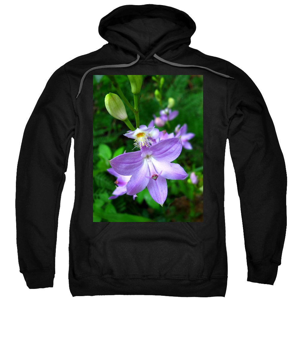 Calopogon Tuberosus Sweatshirt featuring the photograph Grass Pink Orchid by William Tanneberger