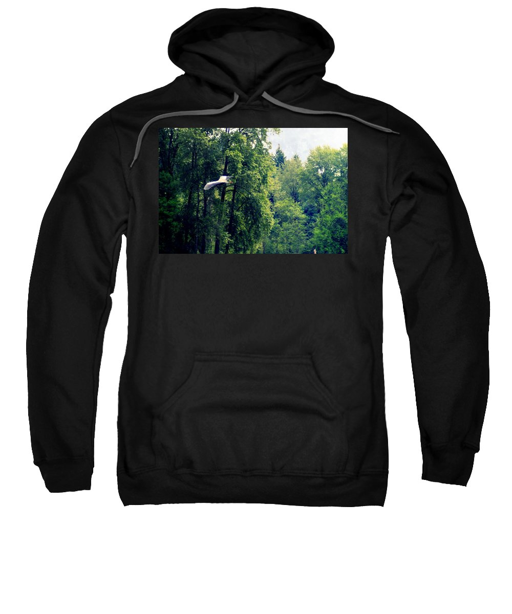 Great Blue Heron Sweatshirt featuring the photograph Great Blue Heron Flying Past The Trees Above Trojan Pond 2 by Dawna Morton