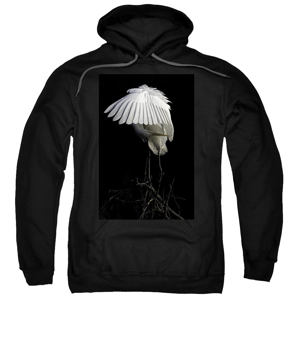 Egret Sweatshirt featuring the photograph Great Egret Bowing by William Jobes