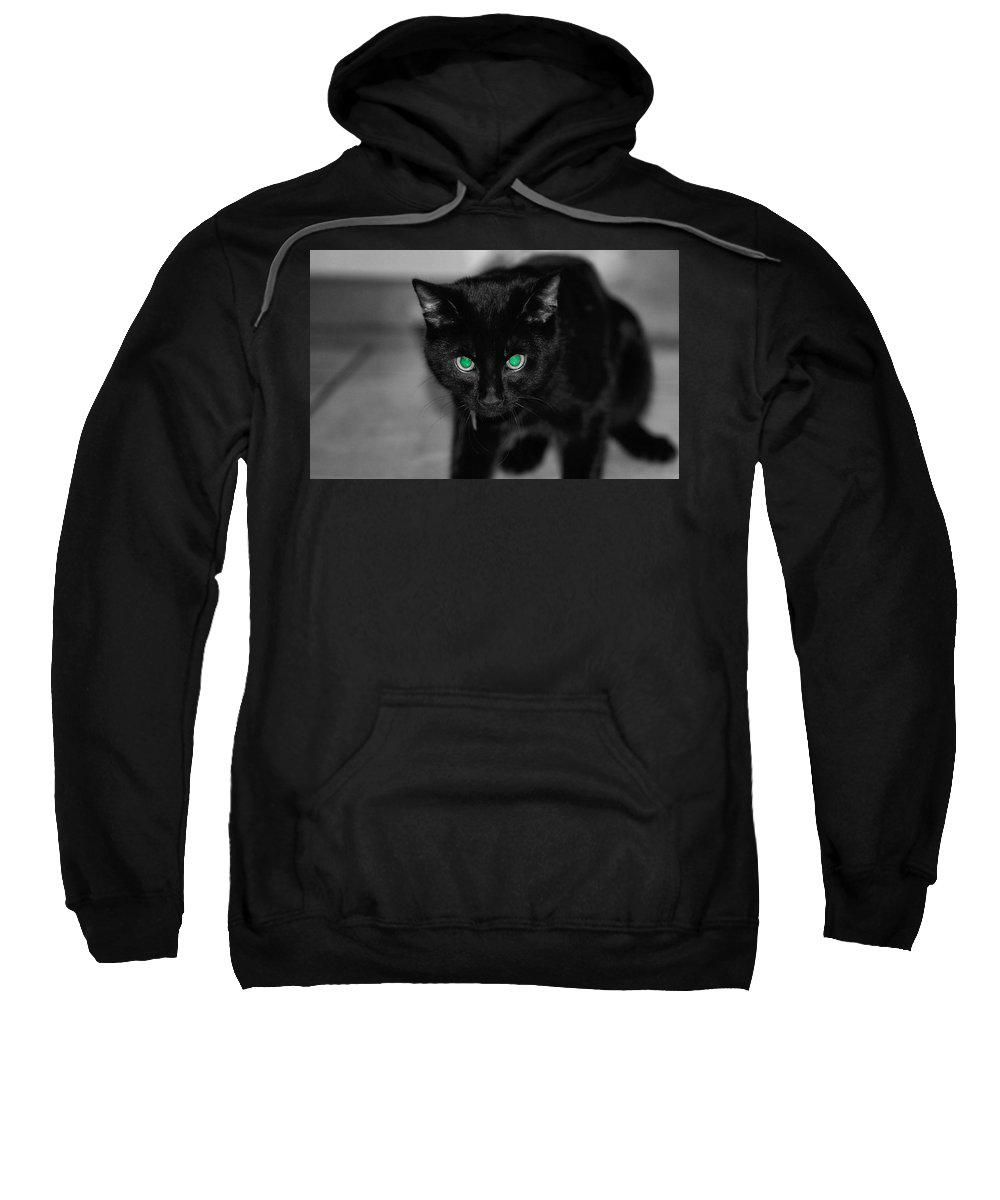 Green Eyes Sweatshirt featuring the photograph Green Eyes by Dan Sproul