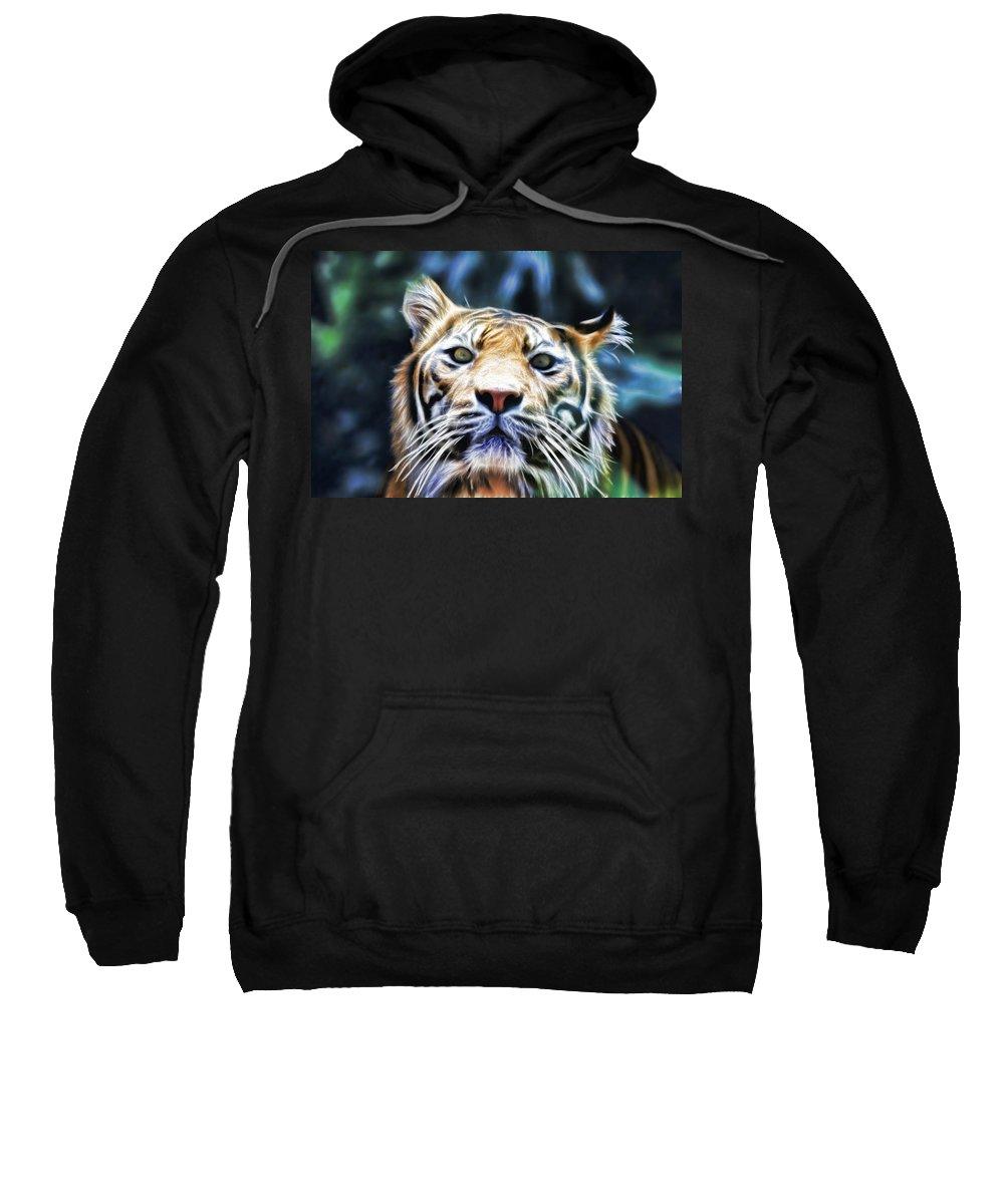Tiger Sweatshirt featuring the photograph Green Eyes by Douglas Barnard