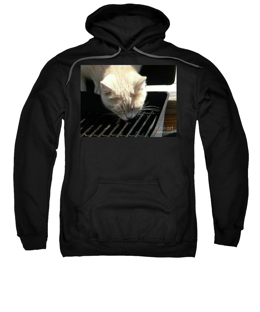 Pet Sweatshirt featuring the photograph Grill Grate Gato by Al Powell Photography USA