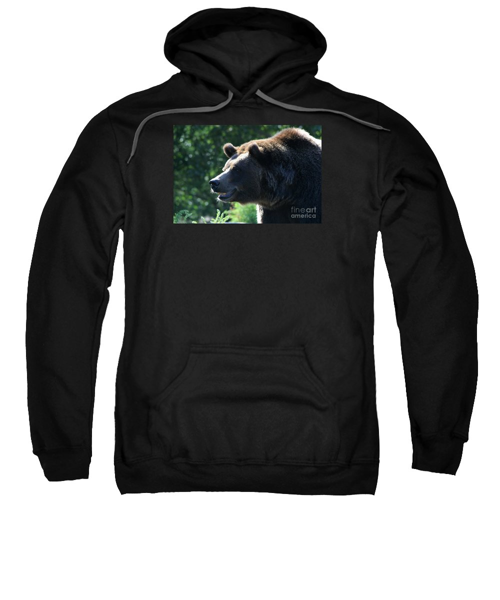 Animal Sweatshirt featuring the photograph Grizzly-7755 by Gary Gingrich Galleries