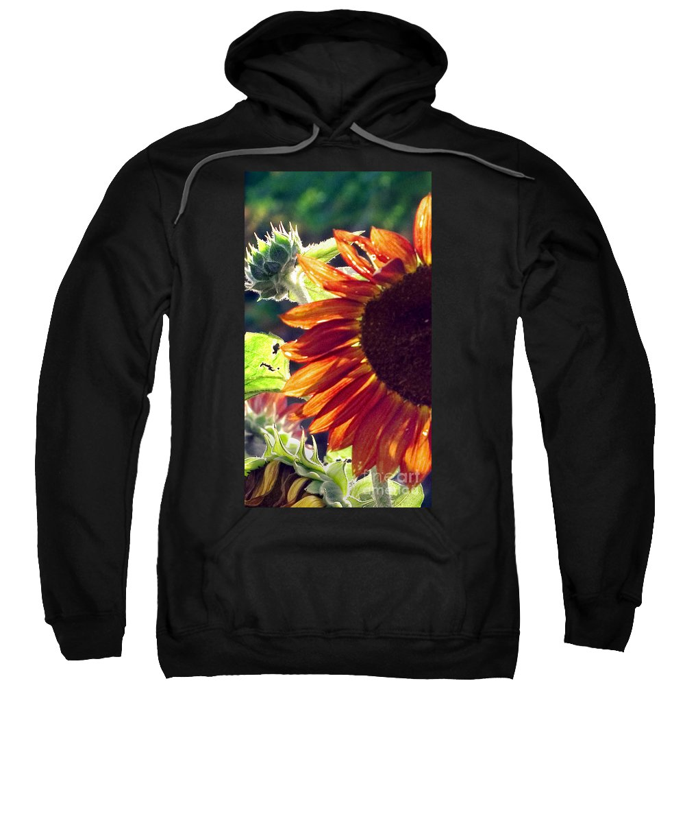 Sunflower Sweatshirt featuring the photograph Half Of A Sunflower by Madeline Ellis