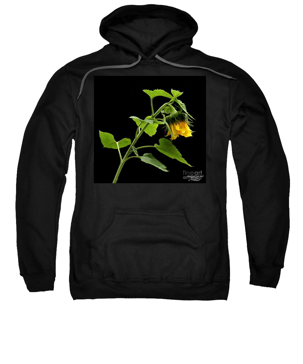 Sunflower Sweatshirt featuring the photograph Hang Down Your Head by Rebecca Morgan