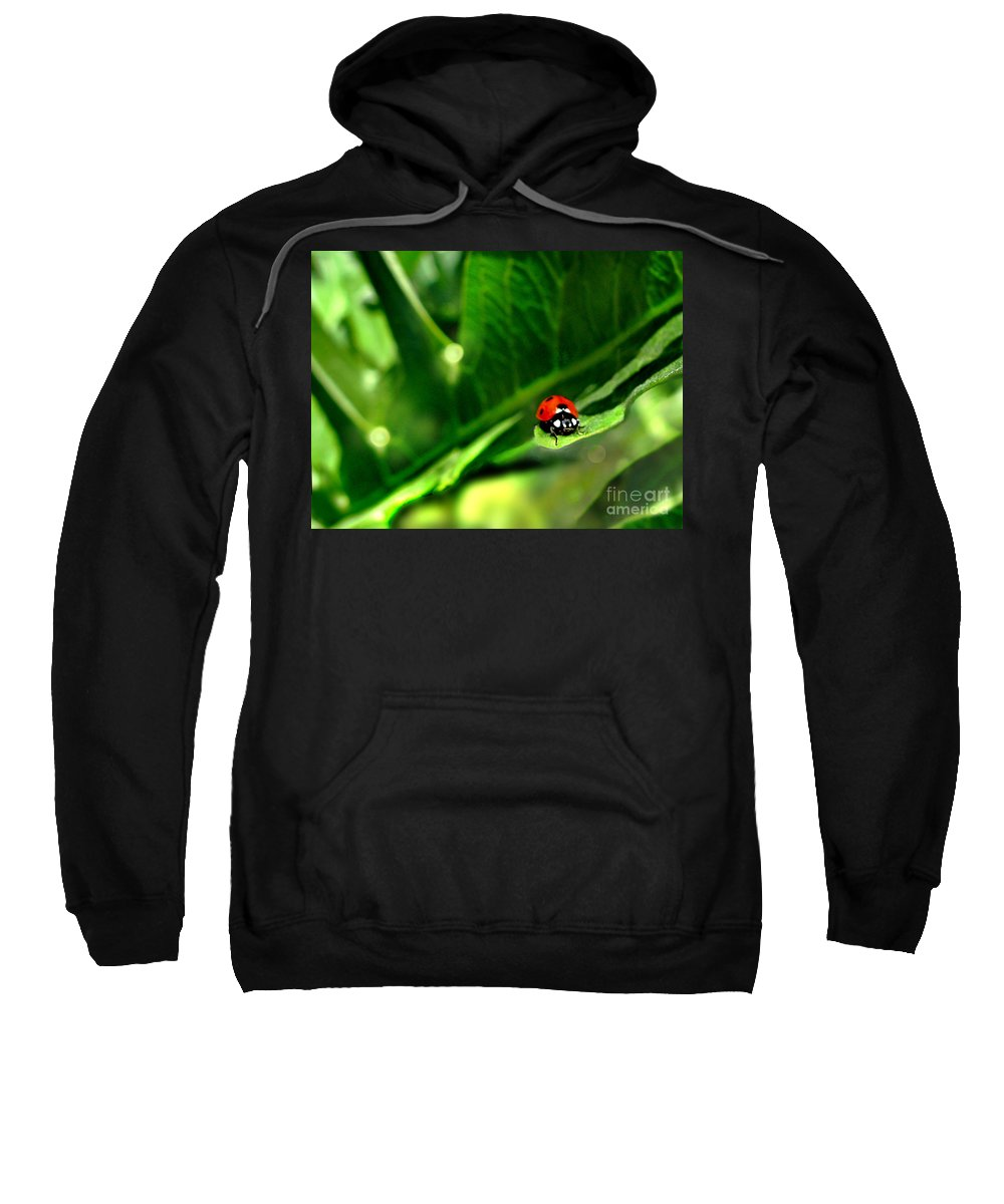 Green Sweatshirt featuring the photograph Hanging On by Jennie Breeze