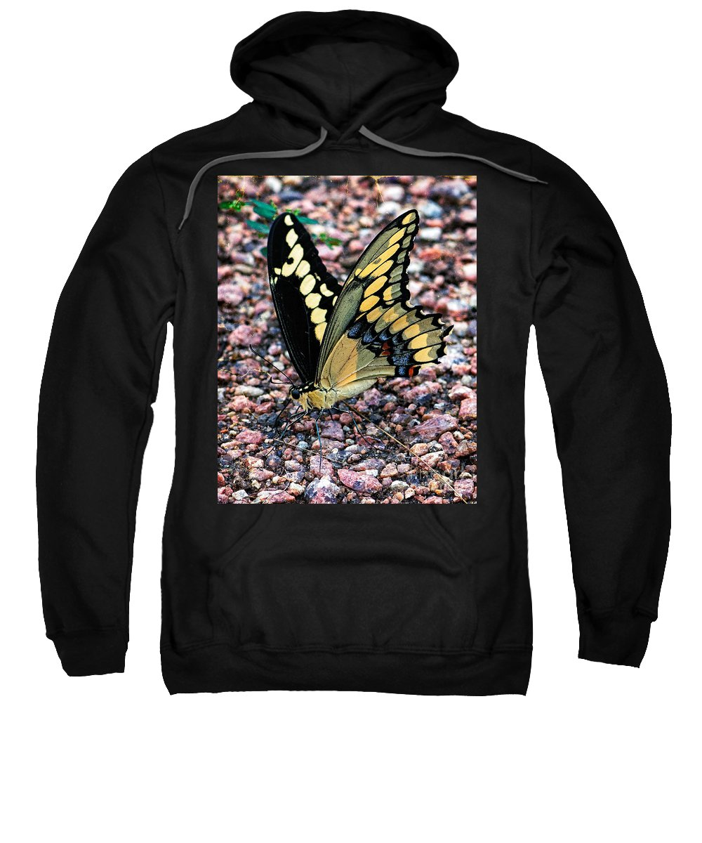Bugs Sweatshirt featuring the photograph Hard Times by Charles Dobbs