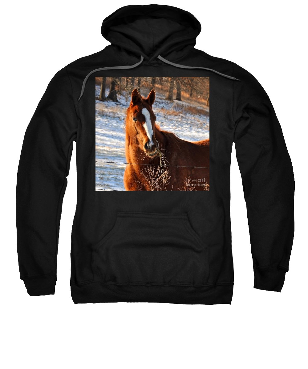 Nature Sweatshirt featuring the photograph Hay There by Nava Thompson