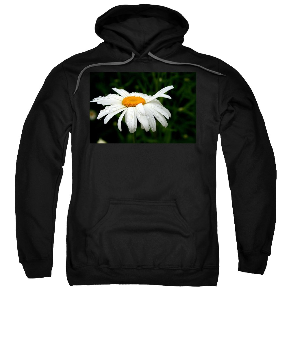Nature Sweatshirt featuring the photograph He Loves Me He Loves Me Not by Kay Novy