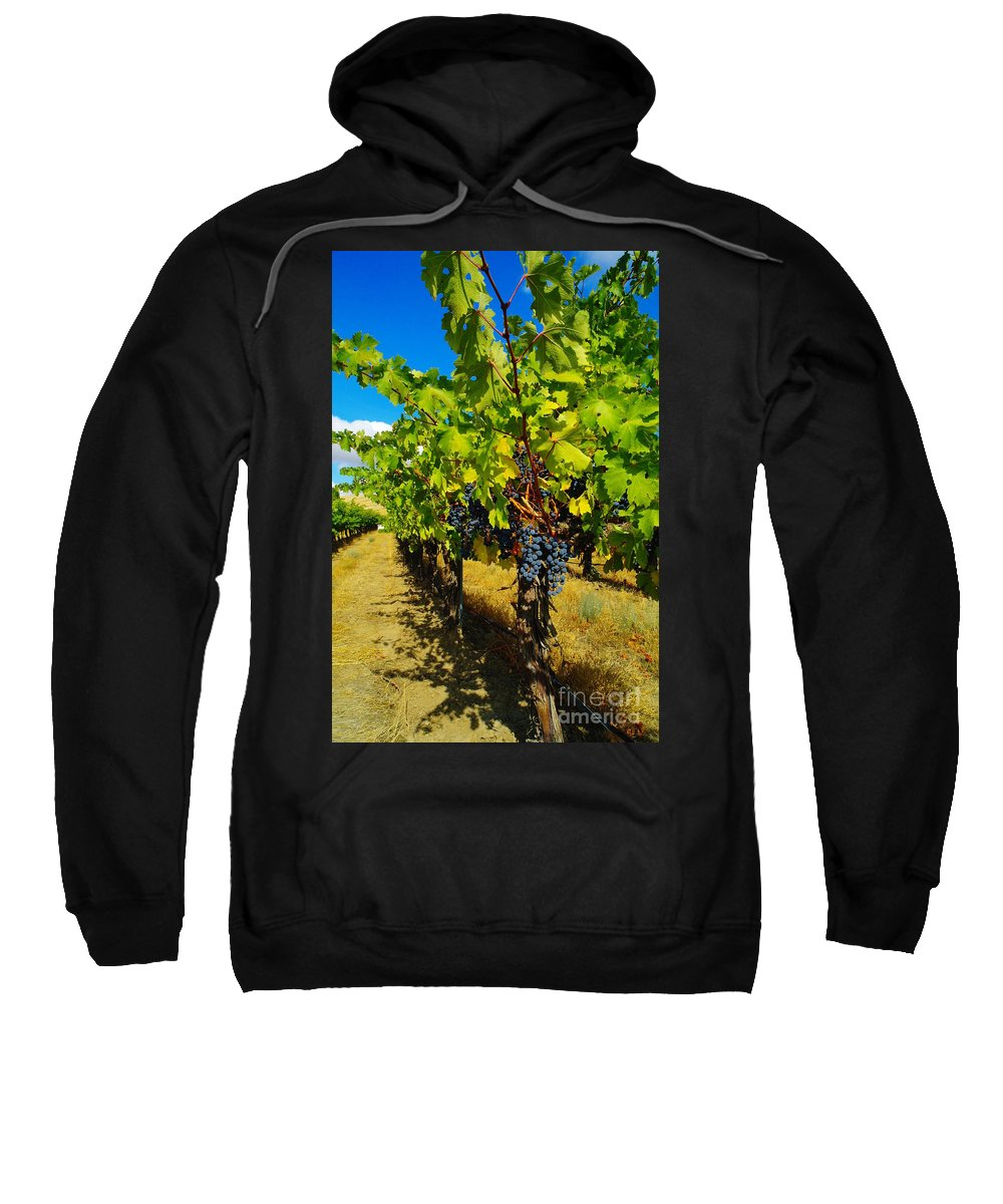 Grapes Sweatshirt featuring the photograph Heavy On The Vine At The High Tower Winery by Jeff Swan