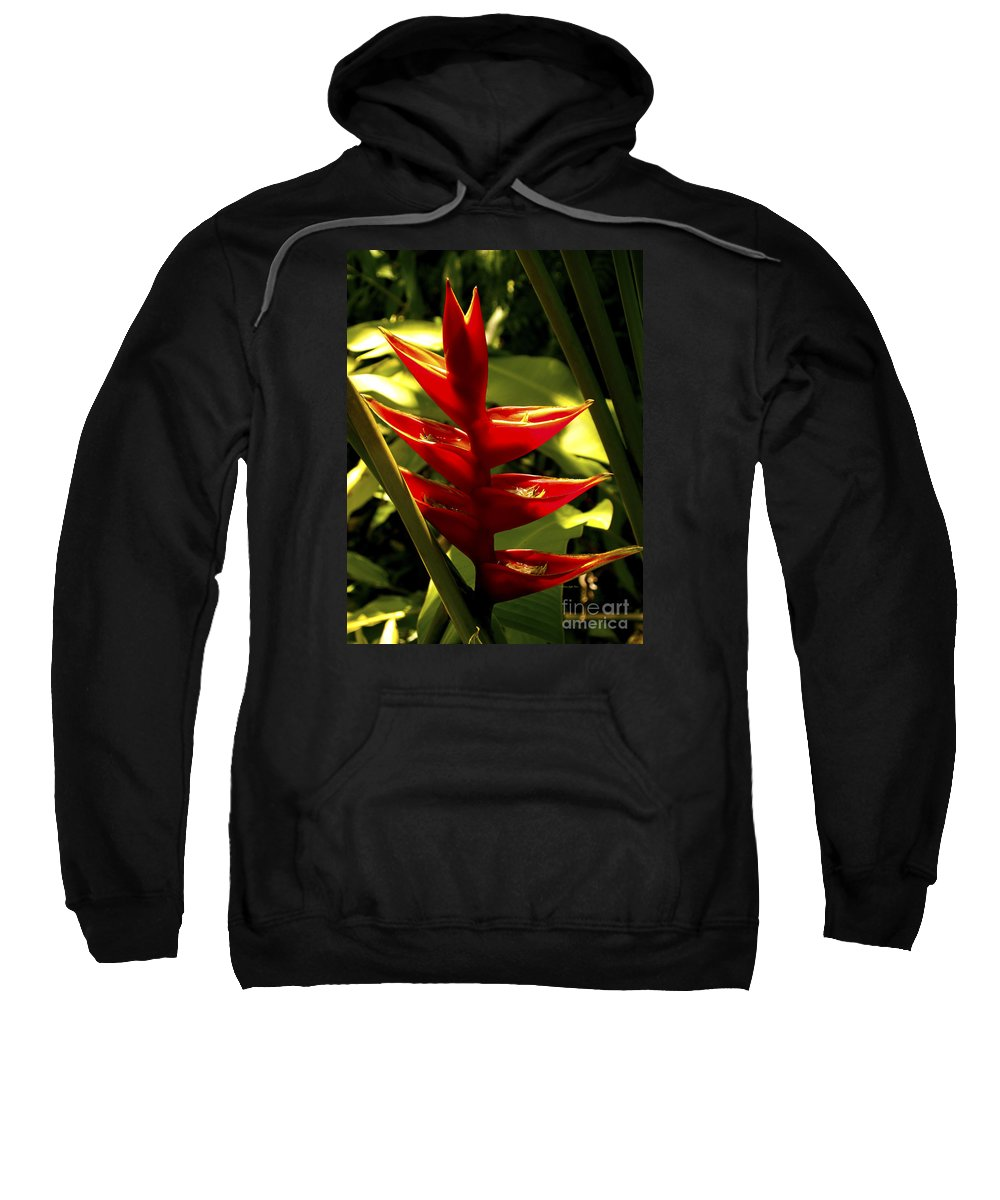 Fine Art Photography Sweatshirt featuring the photograph Heliconia II by Patricia Griffin Brett