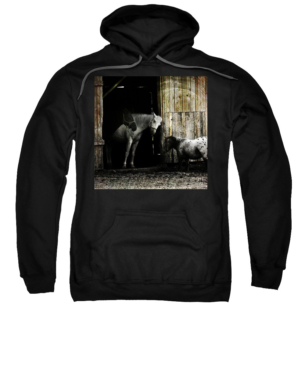 Guest Sweatshirt featuring the photograph Hello Neighbour by Angel Tarantella