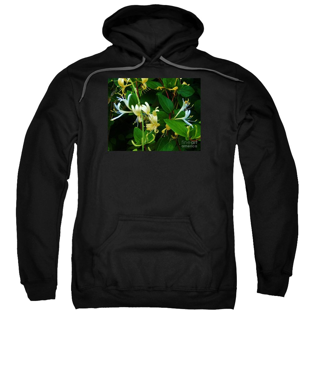 Mother's Day Card Sweatshirt featuring the photograph Mother's Day Card by Larry Campbell