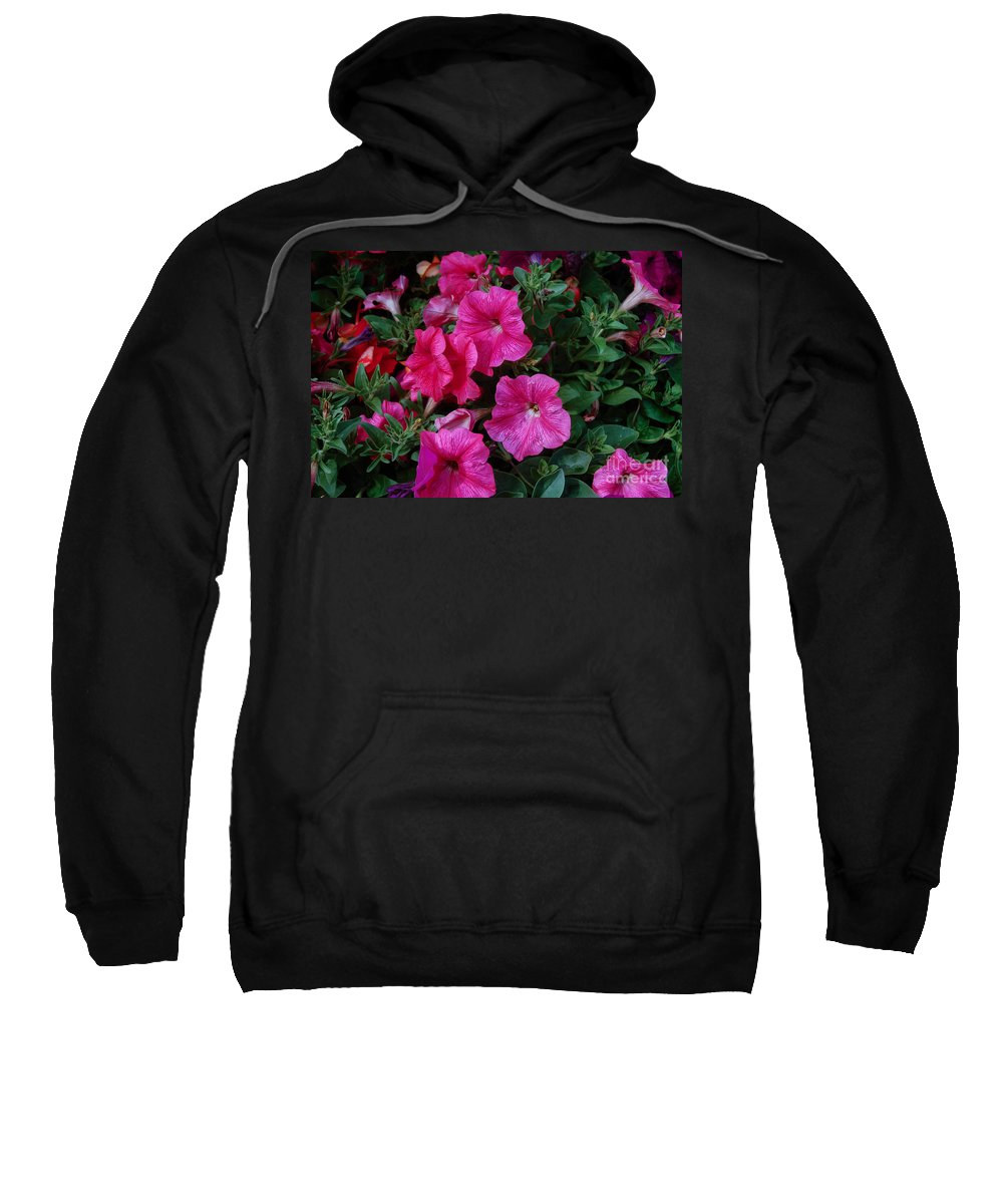 Flowers Sweatshirt featuring the photograph Honeysuckles by Rich Priest
