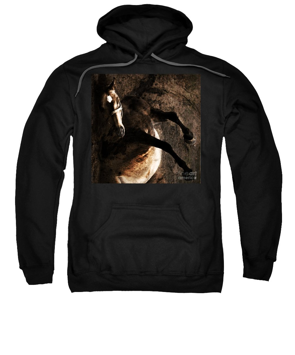 Horse Sweatshirt featuring the photograph Horse Art by Angel Ciesniarska