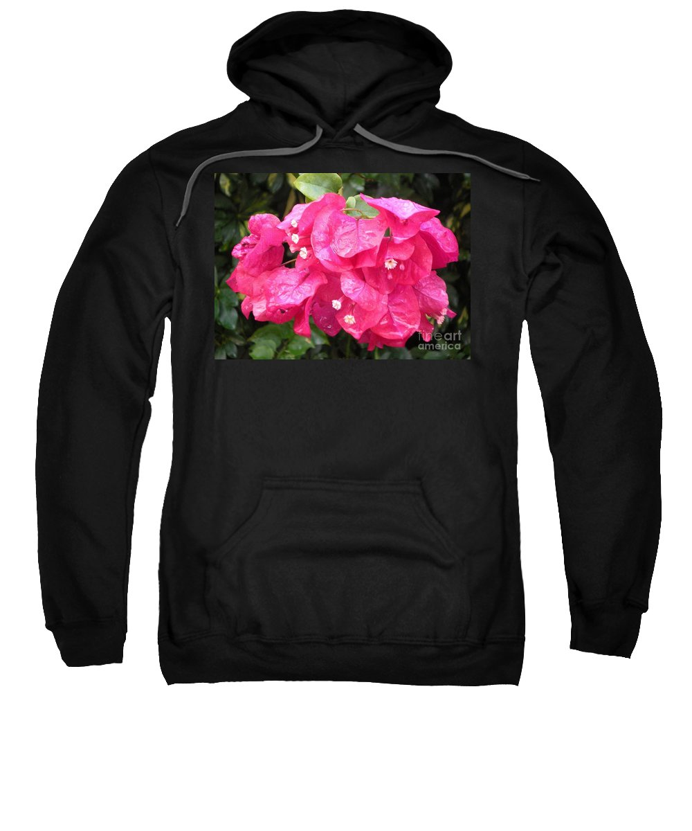 Flower Sweatshirt featuring the photograph Hot Pink Bougainvillea by Graciela Castro