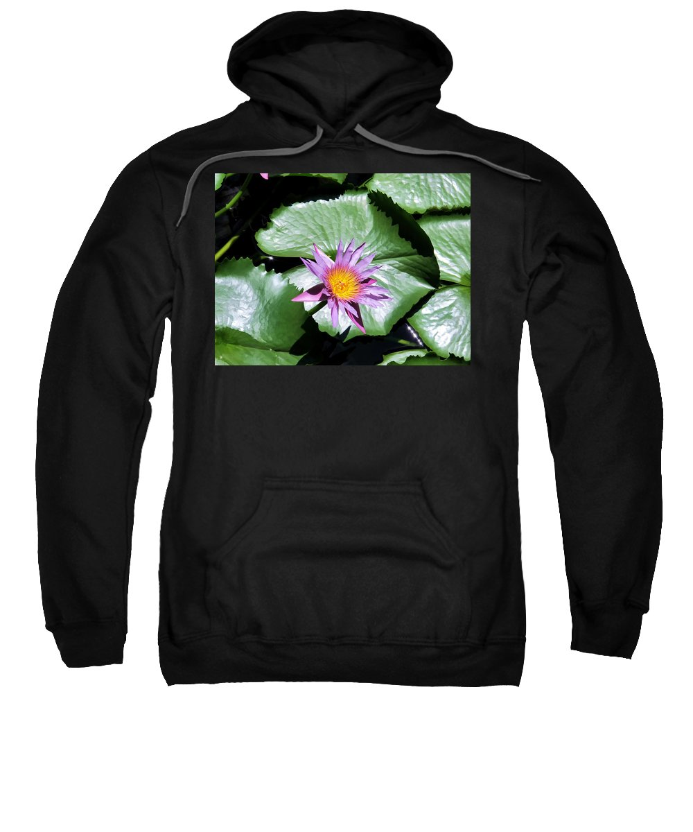 Flower Sweatshirt featuring the photograph Hyatt 17 by Dawn Eshelman