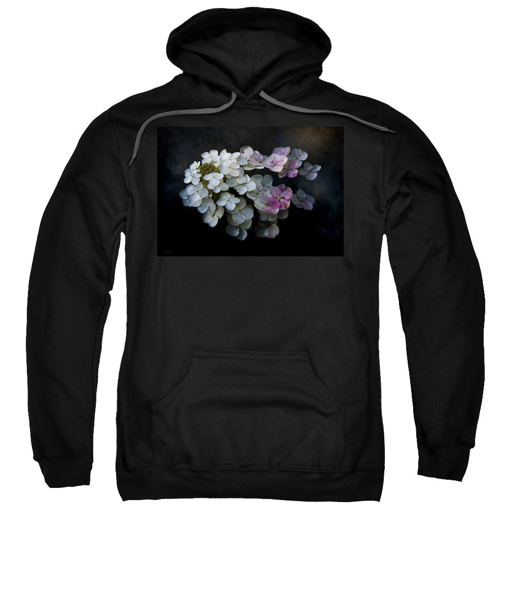 Ron Jones Sweatshirt featuring the photograph Hydrangea Dreams by Ron Jones