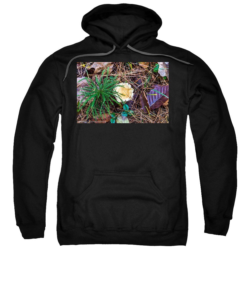 Flora Sweatshirt featuring the photograph I Think I Am A Fungi by Nate Wilson