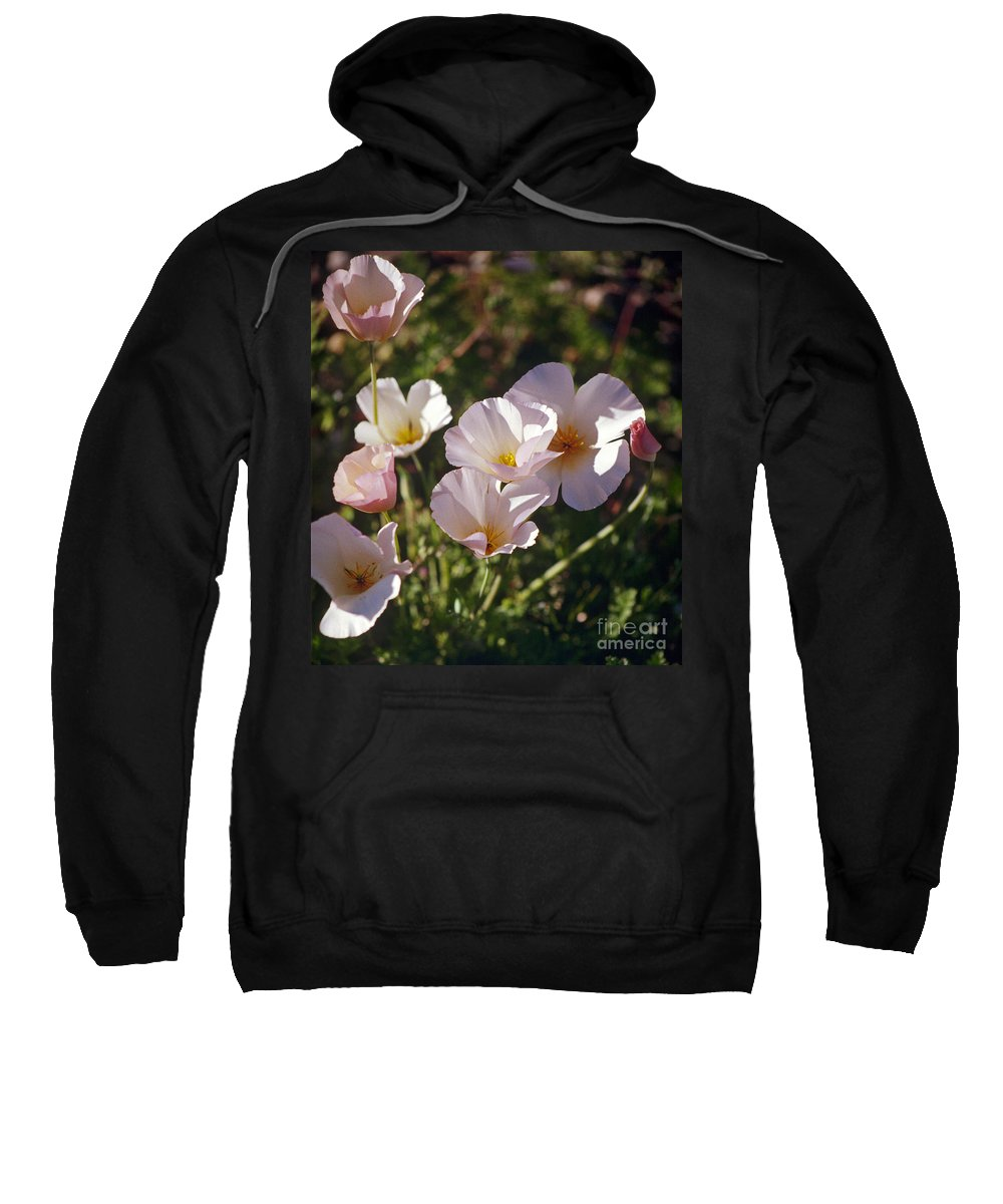 Flowers Sweatshirt featuring the photograph Icelandic Poppies by Kathy McClure