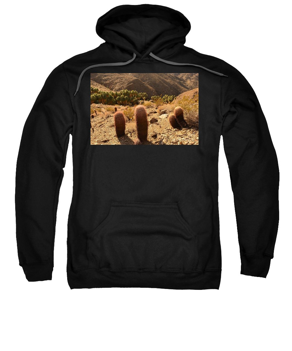 Indian Canyons Sweatshirt featuring the photograph Indian Canyon by Yinguo Huang