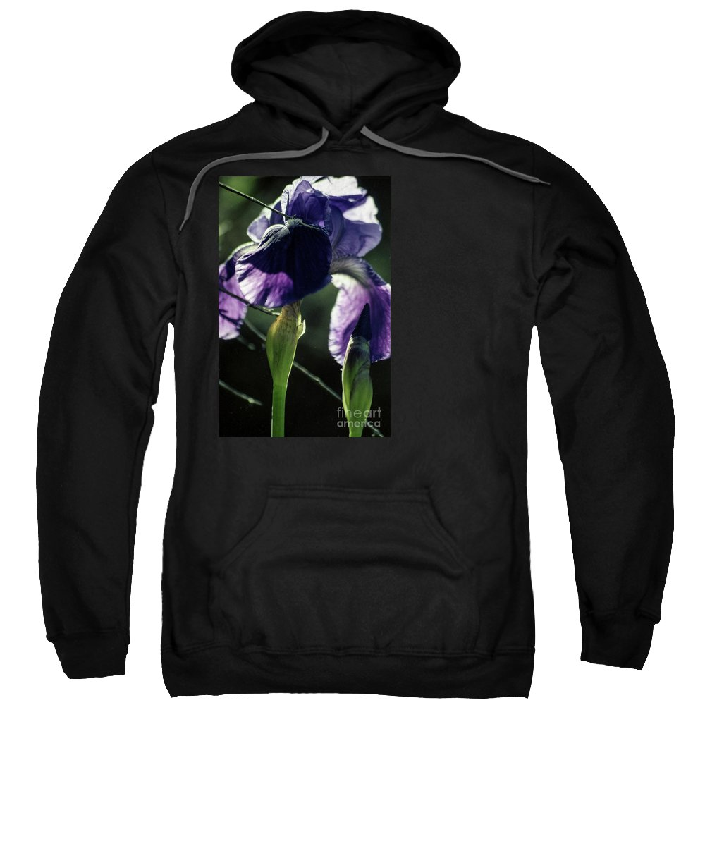 Flowers Sweatshirt featuring the photograph Spring's Gift by Kathy McClure